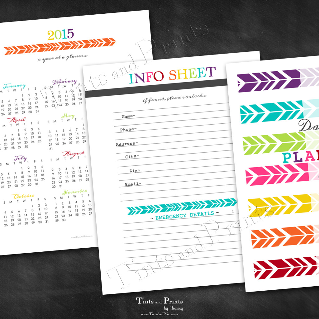 T&P Printables Planner 2015 -pg3